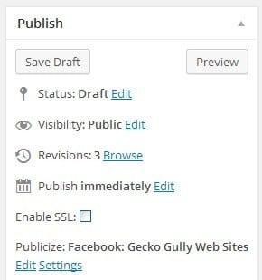 Wordpress publish box