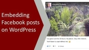 Embedding Facebook Posts on WordPress